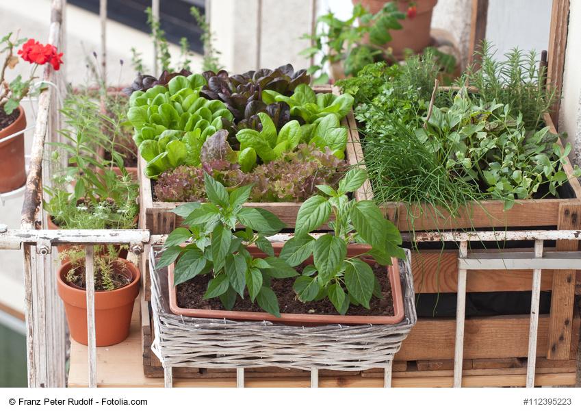 Entspannung im Garten anbauen Balkon